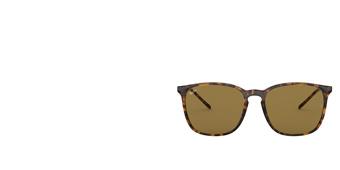 Gafas de Sol RAY BAN RB4387 710/73 Ray-ban