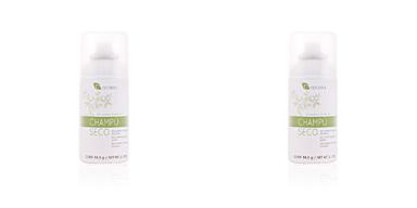 Shampoo seco CHAMPÚ EN SECO brillo natural Azalea