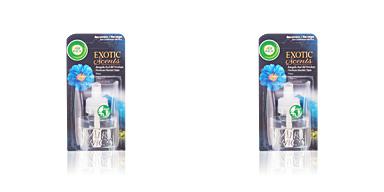Air-wick AIR-WICK ambientador electrico recambio #amapola blau 19 ml