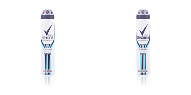 Deodorant WILLIAMS SPORT MEN deodorant spray Rexona