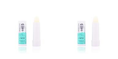 Balsamo labial DERMATINA protector labial aloe vera Dermatina