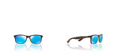 Lunettes de Soleil RAY-BAN RB4202 710/9R  Ray-ban