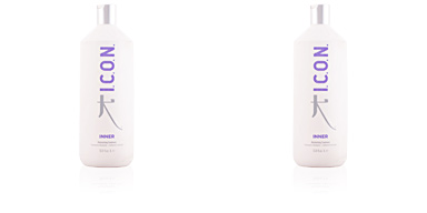 Hair moisturizer treatment INNER moisturizing treatment I.c.o.n.