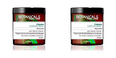 Hair mask BOTANICALS cilantro fuente de fuerza mascarilla L'Oréal París