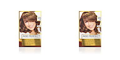 Tintes EXCELLENCE AGE PERFECT #5,03-castaño claro dorado sutil L'Oréal París