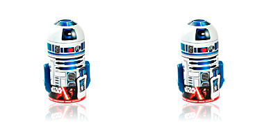 STAR WARS R2D2 HUCHA LOTE Star Wars