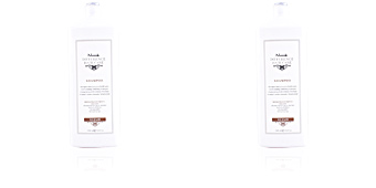 DIFFERENCE HAIR CARE restructuring fortifying shampoo Nook