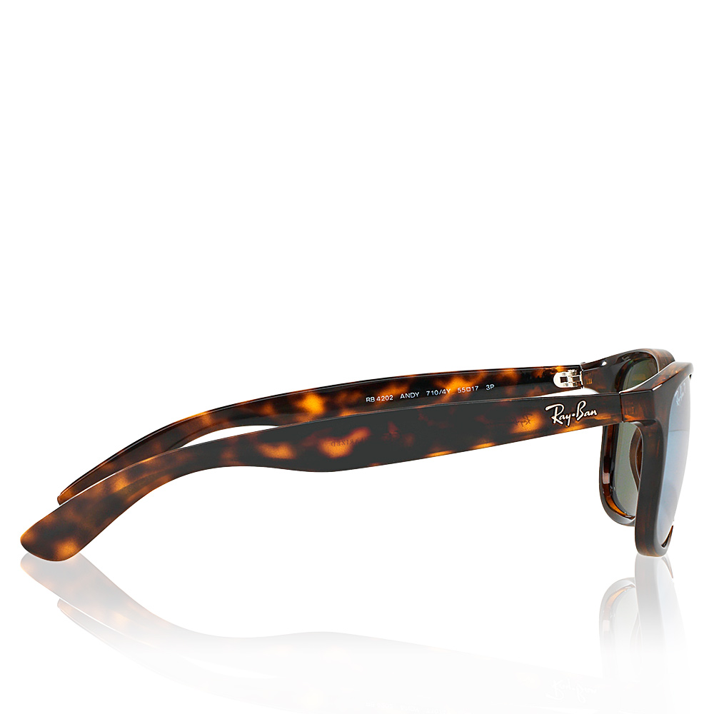 9ace1c3b53 Ray-ban Sunglasses RAY-BAN RB4202 710 Y4 POLARIZED products ...