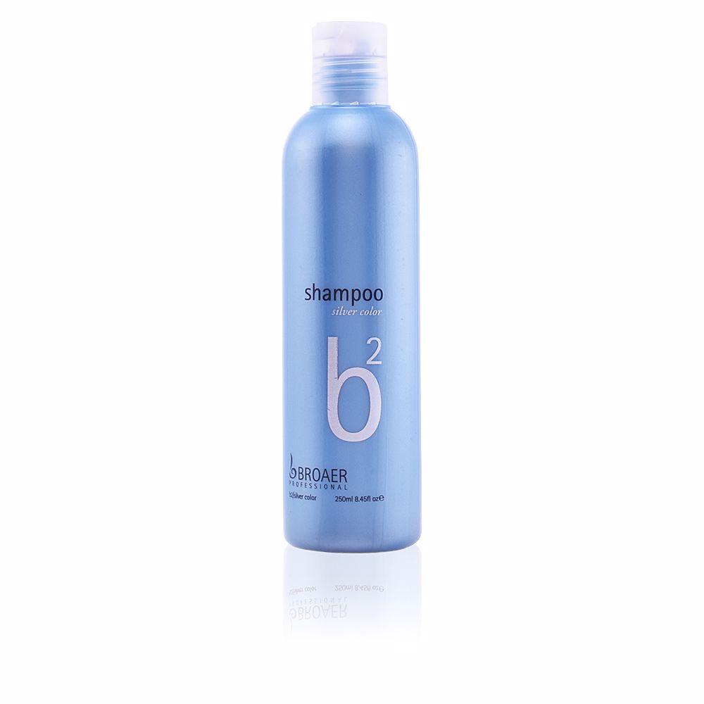 B2 silver color shampoo