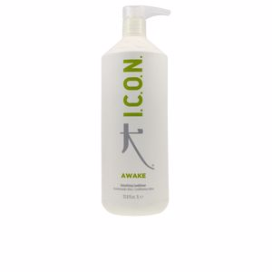 Detangling conditioner AWAKE detoxifying conditioner I.c.o.n.