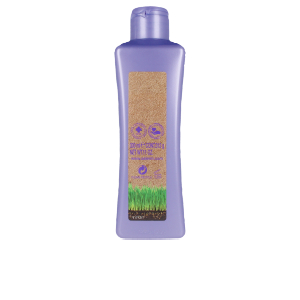 Shampoo for shiny hair - Moisturizing shampoo BIOKERA GRAPEOLOGY shampoo Salerm