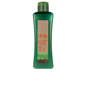 Colorcare shampoo BIOKERA NATURA treated hair shampoo Salerm