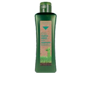 Purifying shampoo BIOKERA NATURA oily hair shampoo Salerm