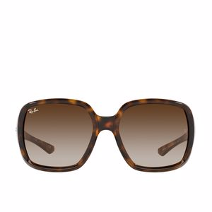Adult Sunglasses POWDERHORN RB4347 710/13 Ray-Ban