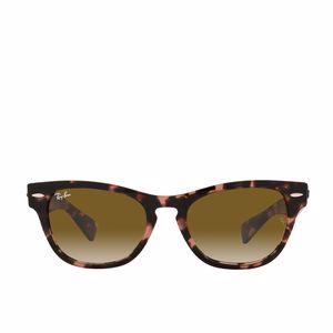 Adult Sunglasses RAY-BAN RB2201 LARAMIE 133451 Ray-Ban