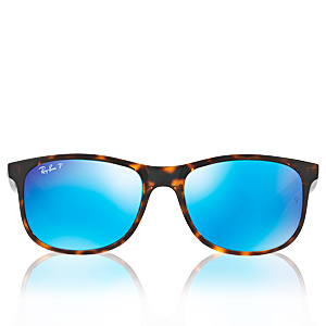 RAYBAN RB4202 710/9R 55 mm