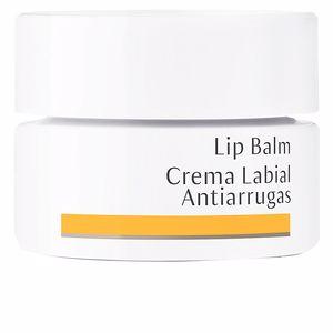 Pommade pour les lèvres LIP BALM anti-wrinkles Dr. Hauschka