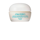 AFTER SUN intensive recovery cream 40 ml