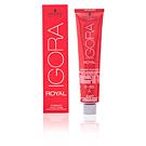 IGORA ROYAL 6-65 60 ml